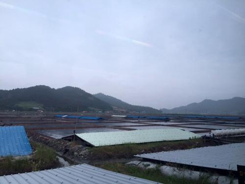 新安郡荏子面(イムジャミョン)